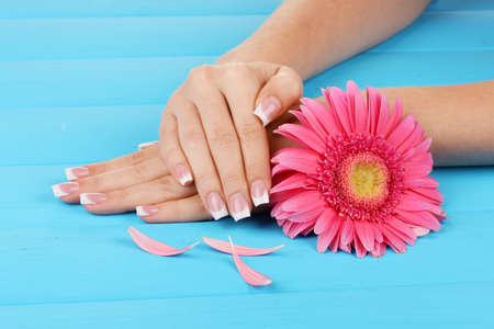 Woman hands with french manicure and flower on blue wooden background photo