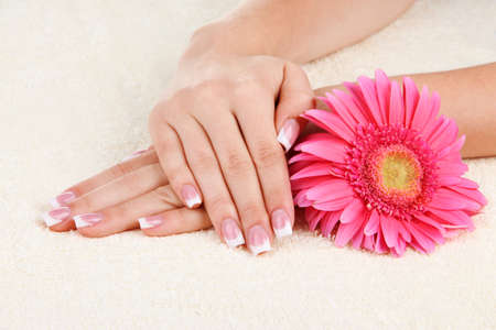 Woman hands with french manicure and flower on towel Stock Photo