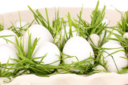 eco-friendly eggs in box close-up Stock Photo - 15830969