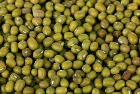 munggo: Mung beans Stock Photo