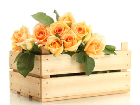 valentinas: beautiful bouquet of roses in wooden box isolated on white