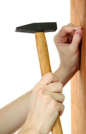 settler: man hands with nail and hammer