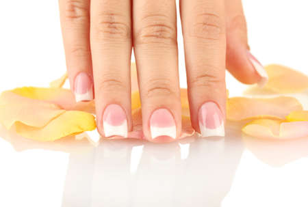 human fingernail: Yellow rose petals with womans hand on white background Stock Photo