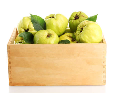 quinces: sweet quinces with leaves in wooden crate, isolated on white
