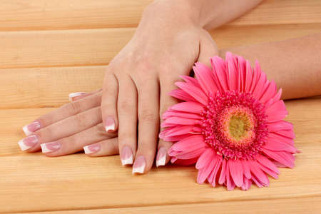 Woman hands with french manicure and flower on wooden background Stock Photo - 15898146