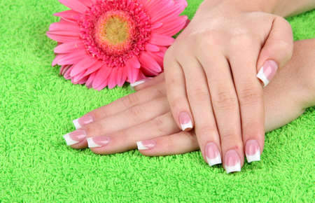 Woman hands with french manicure and flower on green towel photo