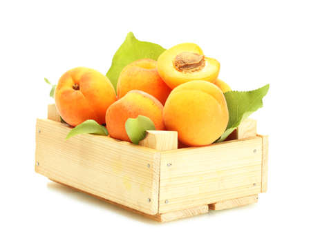 ripe apricots with green leaves in wooden box isolated on white photo