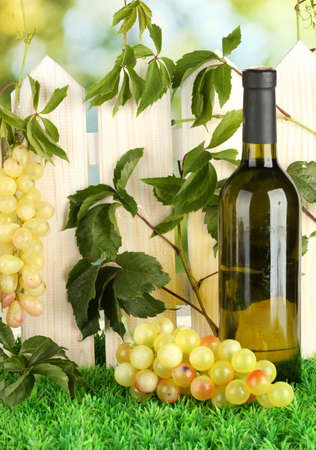 a bottle of wine on the fence background close-up Stock Photo - 15964917