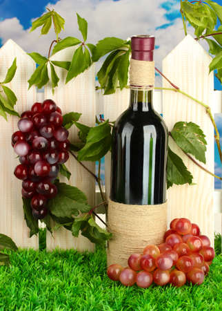 a bottle of wine on the fence background close-up Stock Photo - 16038062