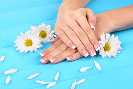 Woman hands with french manicure and flowers on blue wooden background photo