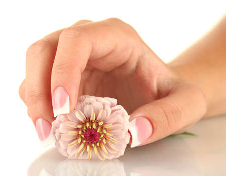 Pink flower with womans hand on white background photo