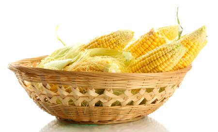fresh corn in basket, isolated on white photo