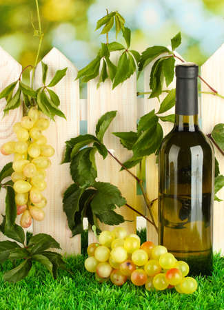 a bottle of wine on the fence background close-up Stock Photo - 16107879