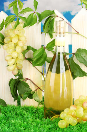 a bottle of wine on the fence background close-up Stock Photo - 16220299