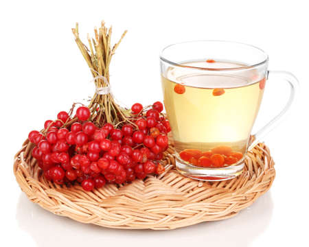 tea with red viburnum isolated on white photo