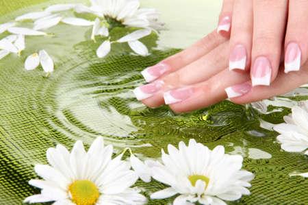 Frau Hände mit Französisch Maniküre und Blumen in grüner Schale mit Wasser