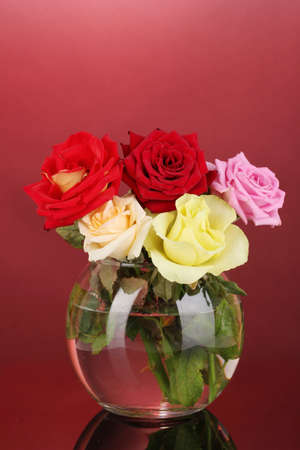 Beautiful roses in glass vase on red background photo