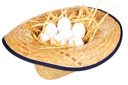 eco-friendly eggs in hat isolated on white Stock Photo - 16317243