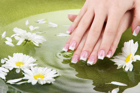 Woman hands with french manicure and flowers in green bowl with water photo
