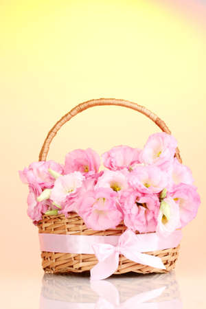 bouquet of eustoma flowers in basket, on yellow background photo