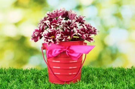 beautiful bouquet of chrysanthemums in a bright colorful bucket on green  background photo