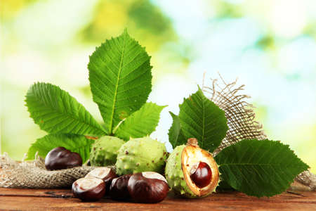 Chestnuts with leaves on wooden table on green background photo