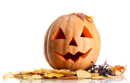halloween pumpkin and autumn leaves, isolated on white Stock Photo - 16344551