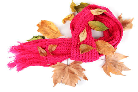 Warm knitted scarf pink with autumn foliage isolated on white Stock Photo - 16344004