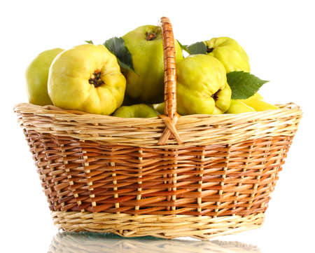 sweet quinces with leaves in basket, isolated on white photo