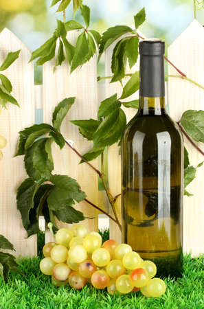 a bottle of wine on the fence background close-up Stock Photo - 16500905