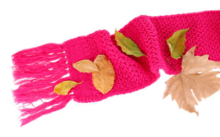 Warm knitted scarf pink with autumn foliage isolated on white Stock Photo