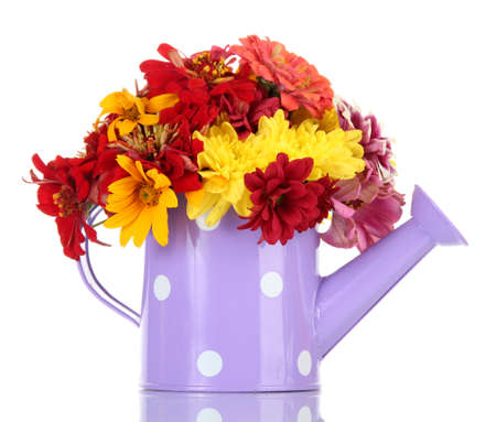 bouquet of beautiful summer flowers in watering can, isolated on white photo