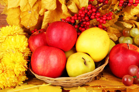 Autumnal composition with yellow leaves, apples and grape background Stock Photo - 16619756