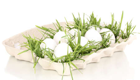 eco-friendly eggs in box isolated on white Stock Photo - 16726299