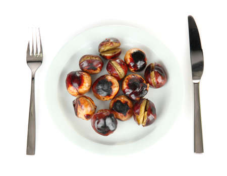 buckeye seed: roasted chestnuts in the white plate with fork and knife isolated on white Stock Photo