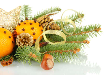 christmas composition with oranges and fir tree, isolated on white photo