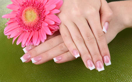 cosmetic lacquer: Woman hands with french manicure and flower on green background