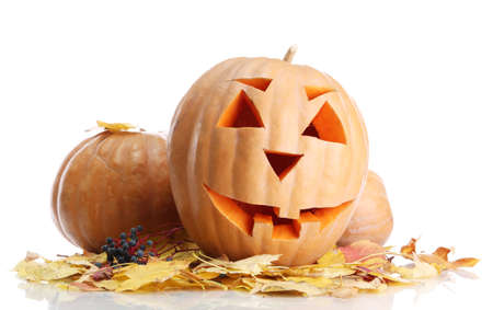 halloween pumpkins and autumn leaves, isolated on white Stock Photo - 16830400
