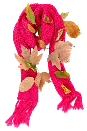 Warm knitted scarf pink with autumn foliage isolated on white Stock Photo - 16861026