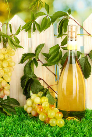 a bottle of wine on the fence background close-up Stock Photo - 16895436