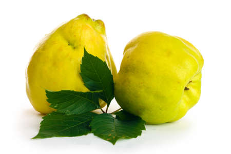 sweet quinces with leaves, isolated on white photo