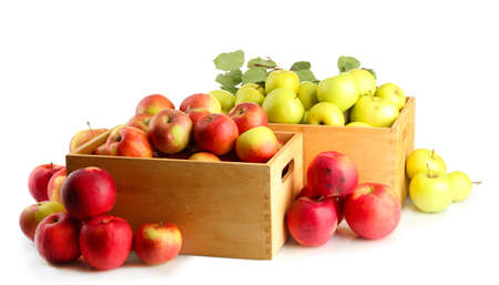 juicy apples with green leaves in wooden crates, isolated on white photo