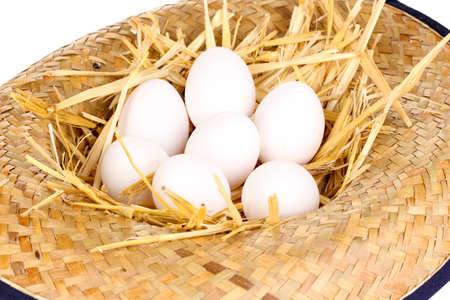 eco-friendly eggs in hat close-up Stock Photo - 16940020