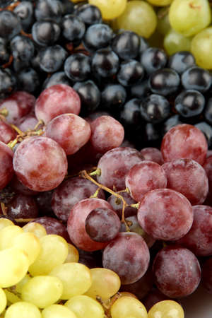 assortment of ripe sweet grapes, close up photo
