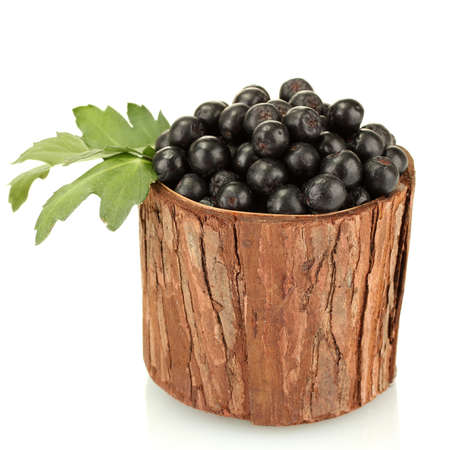 chokeberry with green leaves in wooden bowl isolated on white photo
