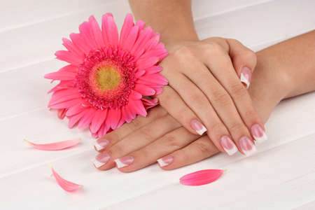 Woman hands with french manicure and flower on white wooden background photo