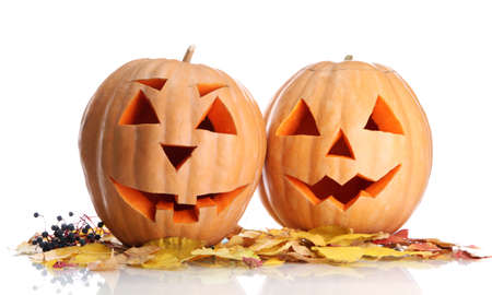 halloween pumpkins and autumn leaves, isolated on white photo