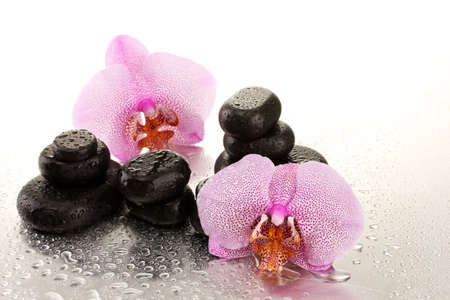 Spa stones and orchid flowers, on wet background  photo