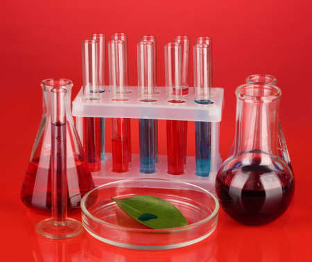 Test-tubes and green leaf tested in petri dish, on color background photo