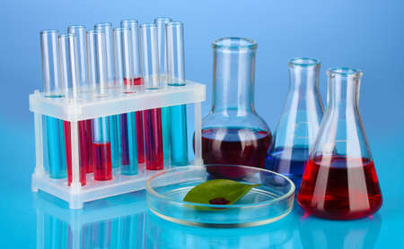 Test-tubes and green leaf tested in petri dish, on color background Stock Photo - 16998961